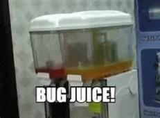 Bug Juice.jpg